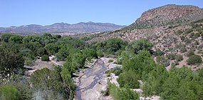 Bear Creek near Silver City
