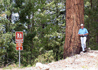 hiking gila national forest